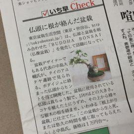 日経MJ(8/23付)にて仏像盆栽が紹介されました!