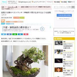 「ニッポン放送」で仏像盆栽が紹介されました!