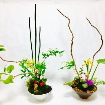 「生け花盆栽~土バージョン~」を作りました!